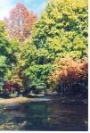 Cheltenham Pennsylvania fall street
